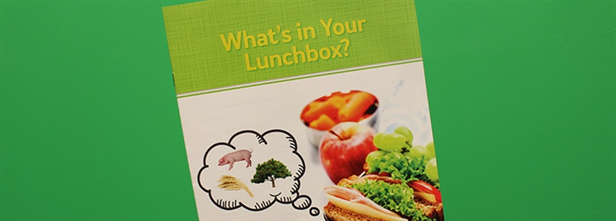 What's in Your Lunchbox Kits